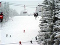 Paltinis ski slopes