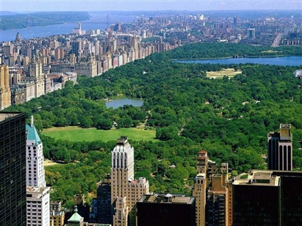 Imagine principala Central Park New York
