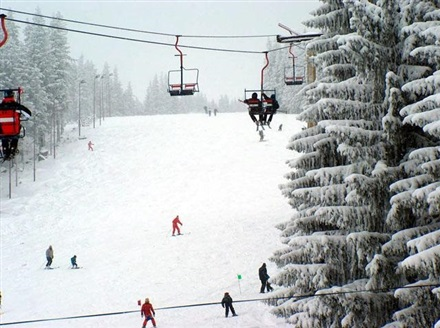 Main image Paltinis ski slopes