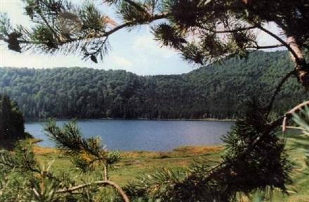 Imagine principala Lacul Sfanta Ana - Harghita