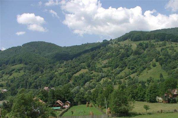 Despre Valea Doftanei Romania Prezentare Imagini Informatii