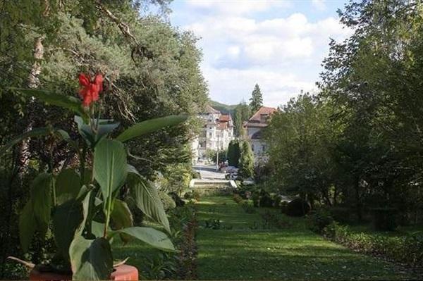 Elveția Baden tratament articular