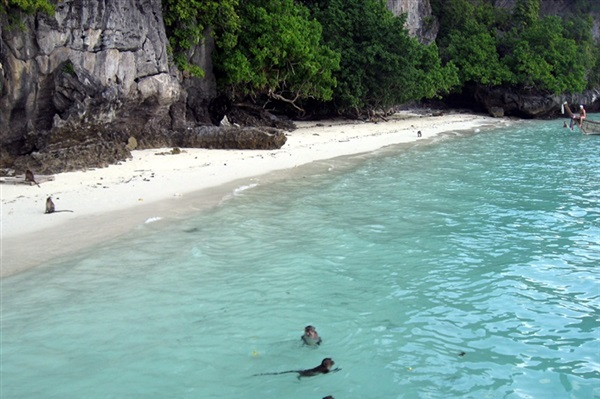 Imagine principala Phi Phi Island