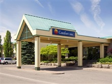 Comfort Inn Clifton Hill, Niagara Falls