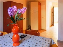 Rododendro One Bedroom, Vico Equense