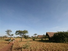 Robanda Tented Camp, Serengeti National Park