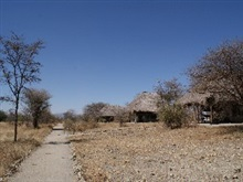 Whistling Thorn Camp, Serengeti National Park