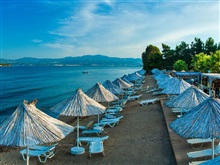 Grand Blue, Eretria Evia
