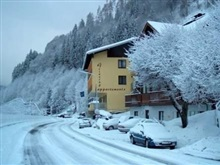Hotel Apartment Grinzing, Zell Am See