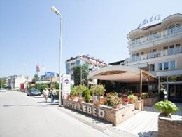 Lebed Hotel * * *