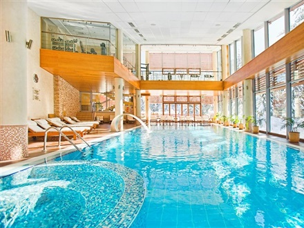 Hotel Yastrebets Wellness and Spa   Borovets