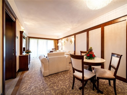 Hotel International  Sinaia