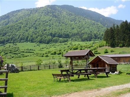Pensiunea Hora Cu Brazi Zarnesti Romania