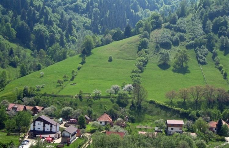 Pensiunea Podul Turcului Bran Romania